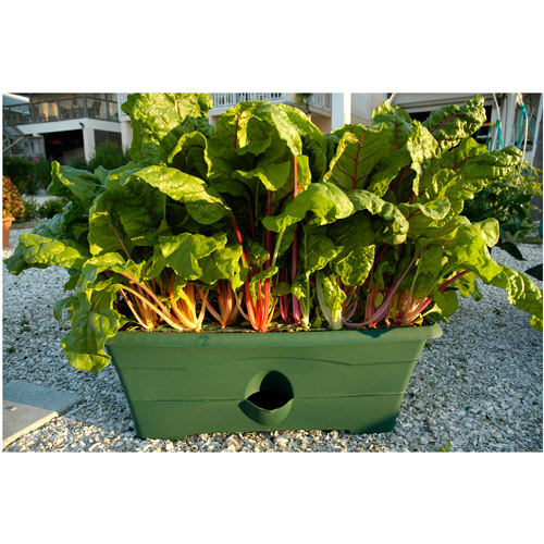 Garden Patch Grow Rectangular Box Planter
