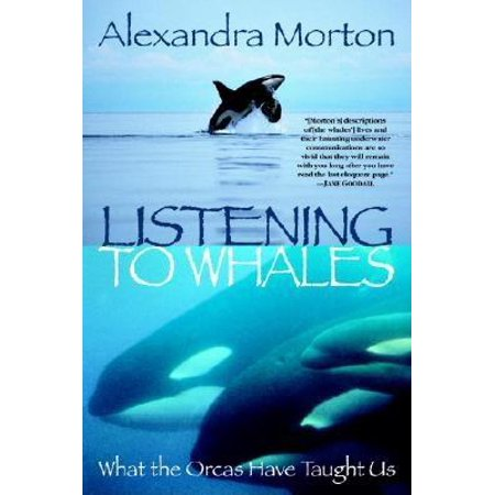 Listening to Whales : What the Orcas Have Taught Us Pictures Orca Whales