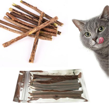EWAVINC 10/20pcs Natural Wood Polygonum Sticks Pet Cat Molar Toothpaste Stick Cleaning Teeth Toys for Kitty ()