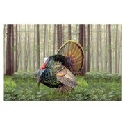 Counter Art CART46978 Game Birds Paper Placemats, Set of 24