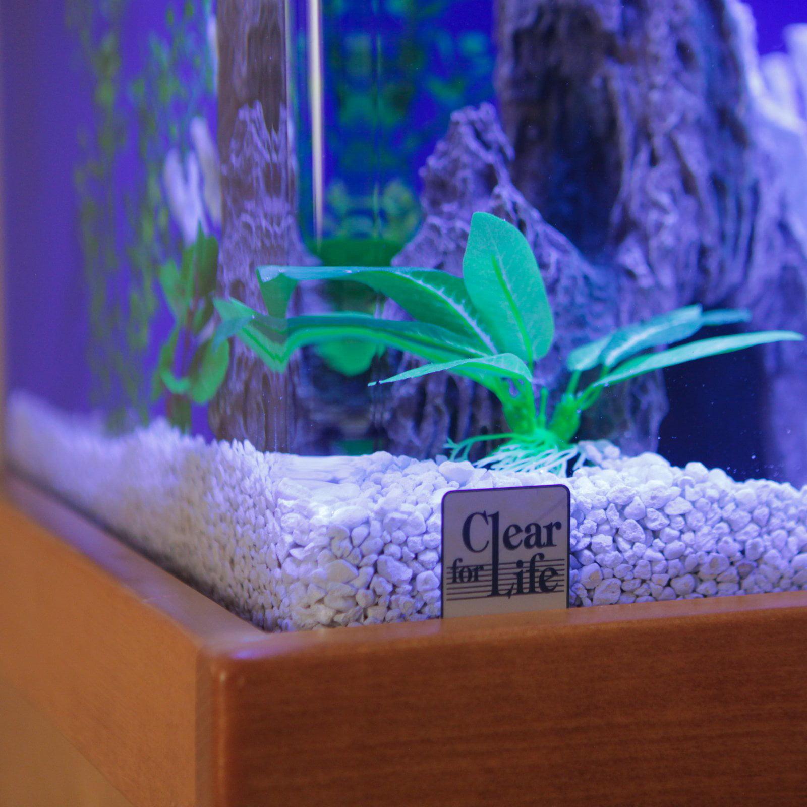 Life 65r Rectangle Acrylic Aquarium