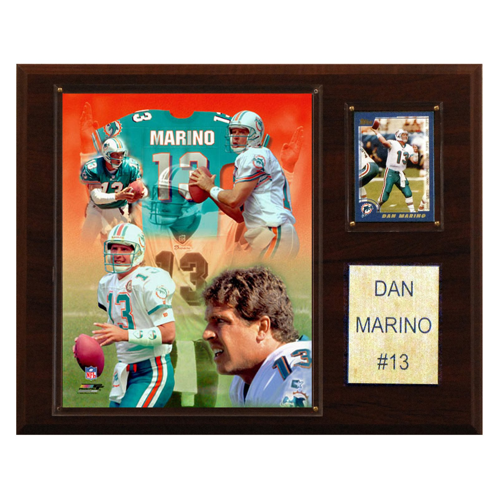 C&I Collectables NFL 12x15 Dan Marino Miami Dolphins Player Plaque