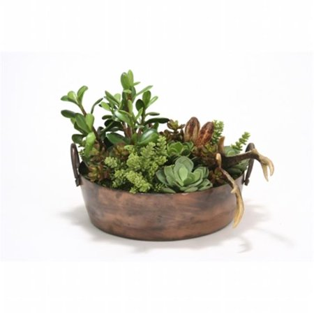 Distinctive Designs 1937 Succulent Mix in Round Copper Planter (First Rounds Mix)