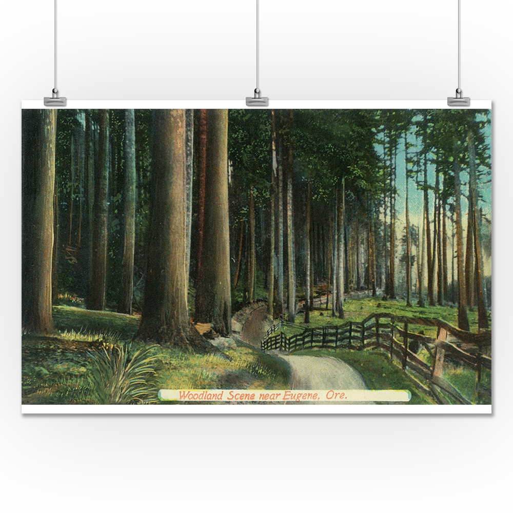 Lantern Press Eugene, Oregon - Woodland Scene (24x36 Gicl...