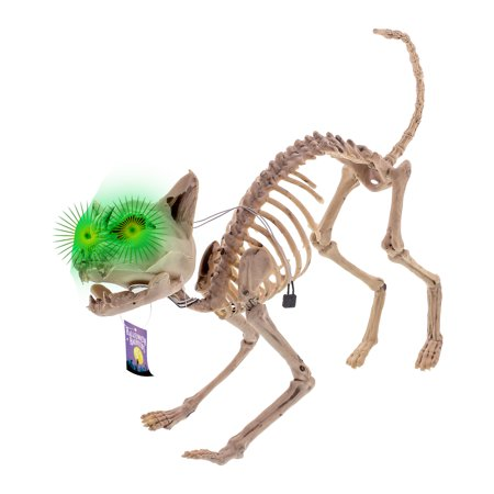 Halloween Haunters Skeleton Meowing Kitty Cat Light-Up Green Eye Prop Decoration - Halloween Decorations Props Sale