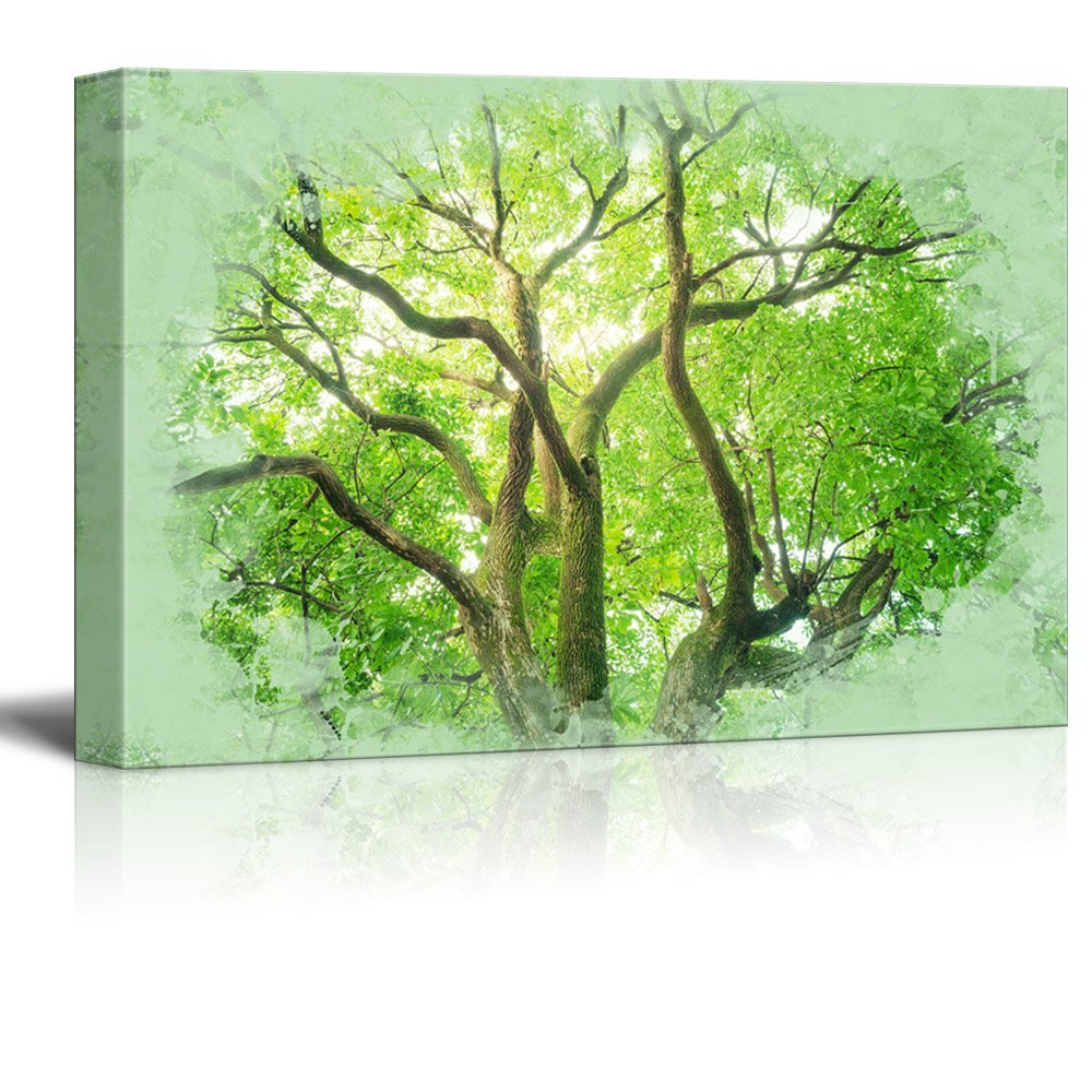 wall26 Canvas Print Landscape Wall Art - Fresh Green Camphor Tree - Gallery Wrap Modern Home Decor | Ready to Hang -32x48 inches