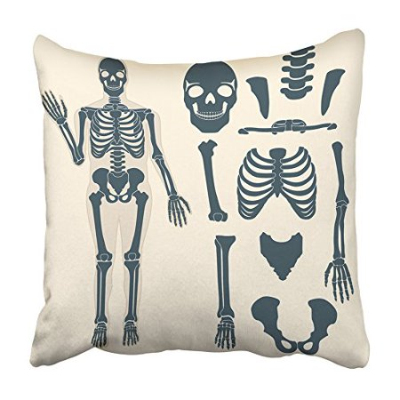 ARHOME Human Skeleton with Different Parts Anatomy of Body Wrist and Thorax Chest Pillowcase Cushion Cover 20x20 inch (Skeleton Chest)