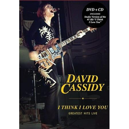 David Cassidy: I Think I Love You Greatest Hits Live (DVD)](David Cassidy Halloween)