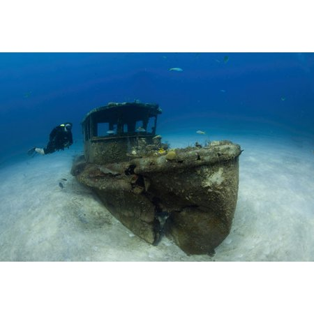 A diver hovers near the wreck of a tugboat Grand Bahama Bahamas Poster Print by Brook PetersonStocktrek Images