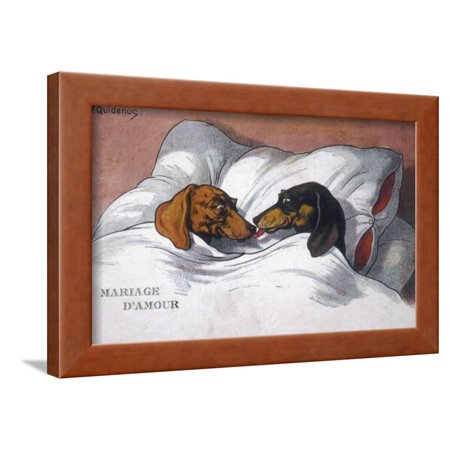 Dachshunds in Bed a Marriage of Love Framed Print Wall