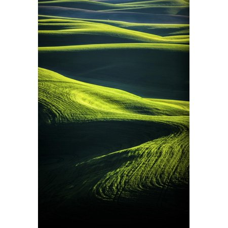 The Green Rolling Hills of the Palouse in Washington in Spring Print Wall Art By Ben Herndon