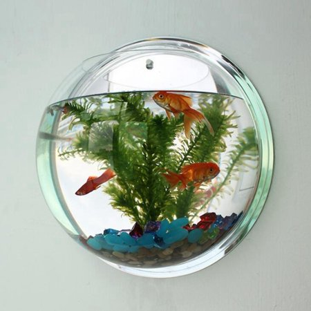 Creative Wall Hanging Acrylic Fish Bowl Home Decoration Aquariums Flowerpot Decor Flower (Best Fish Bowl Drinks)