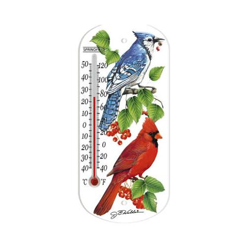 TAYLOR PRECISION PRODUCTS 8-Inch Blue Jay Indoor/Outdoor Tube Thermometer