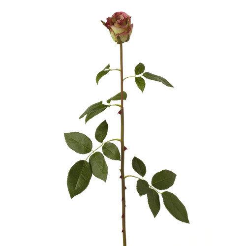 Sage & Co. Fleur Garden Rose Bud Stem (Set of 24)