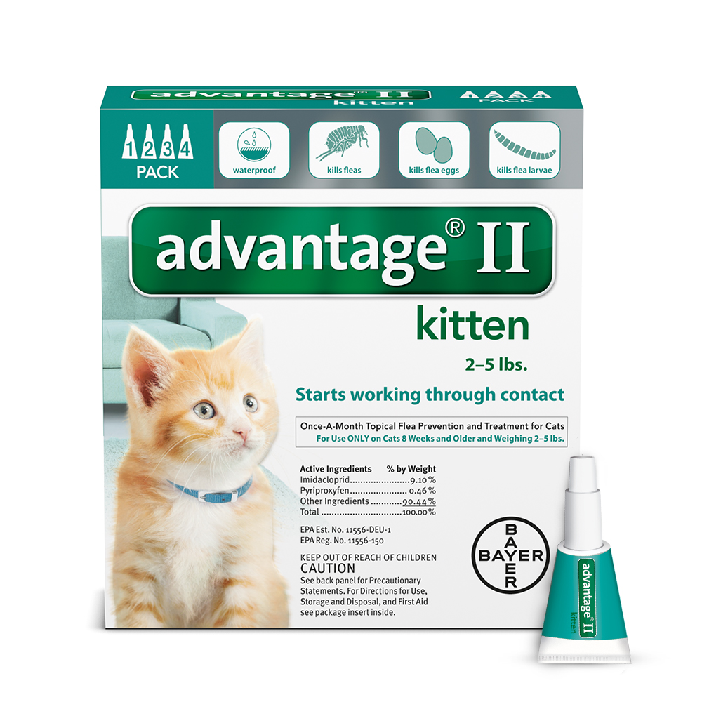 Advantage II Flea Topical Treatment For Kittens, 4 Monthly Treatments by Bayer Ag
