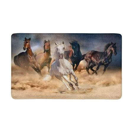 MKHERT Horse Herd Run in Desert Sand Storm Against Dramatic Sky Doormat Rug Home Decor Floor Mat Bath Mat 30x18 inch Desert Sky Cotton Print