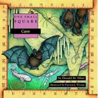 One Small Square: Cave (Paperback)