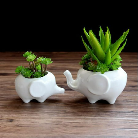 Kawaii Animals Ceramic Flower pot Elephant Succulent Planter Cactus Succulent Plants Flower Cute White Pot (1PCS Elephants) ()