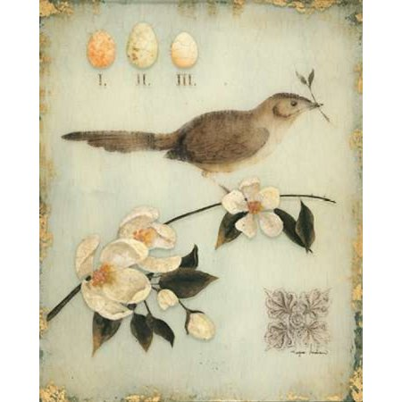 - Blossom Recollection Poster Print by Regina Andrew Design