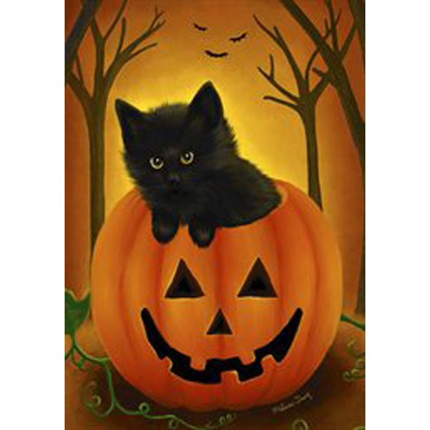 Halloween Kitten Garden Flag Fall Pumpkin Black Cat Jack O Lantern 12 5 X 18 Walmart Com Walmart Com