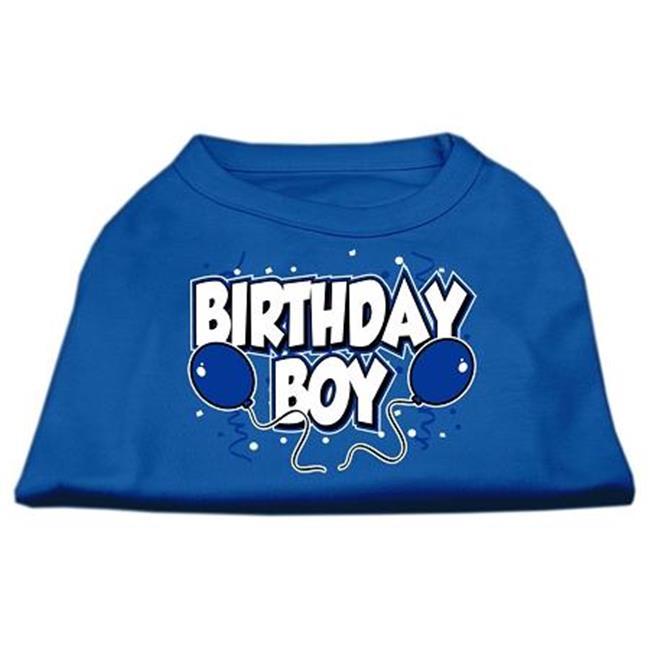 Birthday Boy Screen Print Shirts Blue Xxl (18) - image 1 de 1