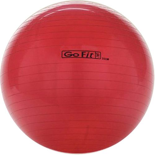 GoFit 55cm Exercise Ball with Pump