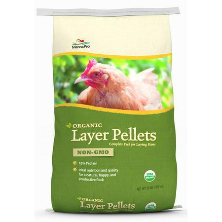 Chicken Feed - Walmart com