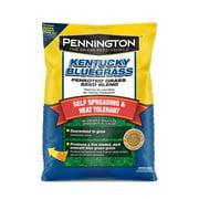 Pennington Kentucky Bluegrass; 3 lbs