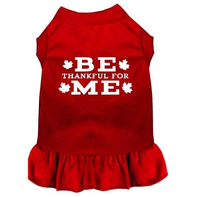 Be Thankful For Me Screen Print Dress Red Sm (10) - image 1 de 1