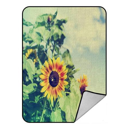 PHFZK Summer Landscape Blanket, Nature Art Sunflowers Fields Green Yellow Fleece Blanket Crystal Velvet Front and Lambswool Sherpa Fleece Back Throw Blanket 58x80inches