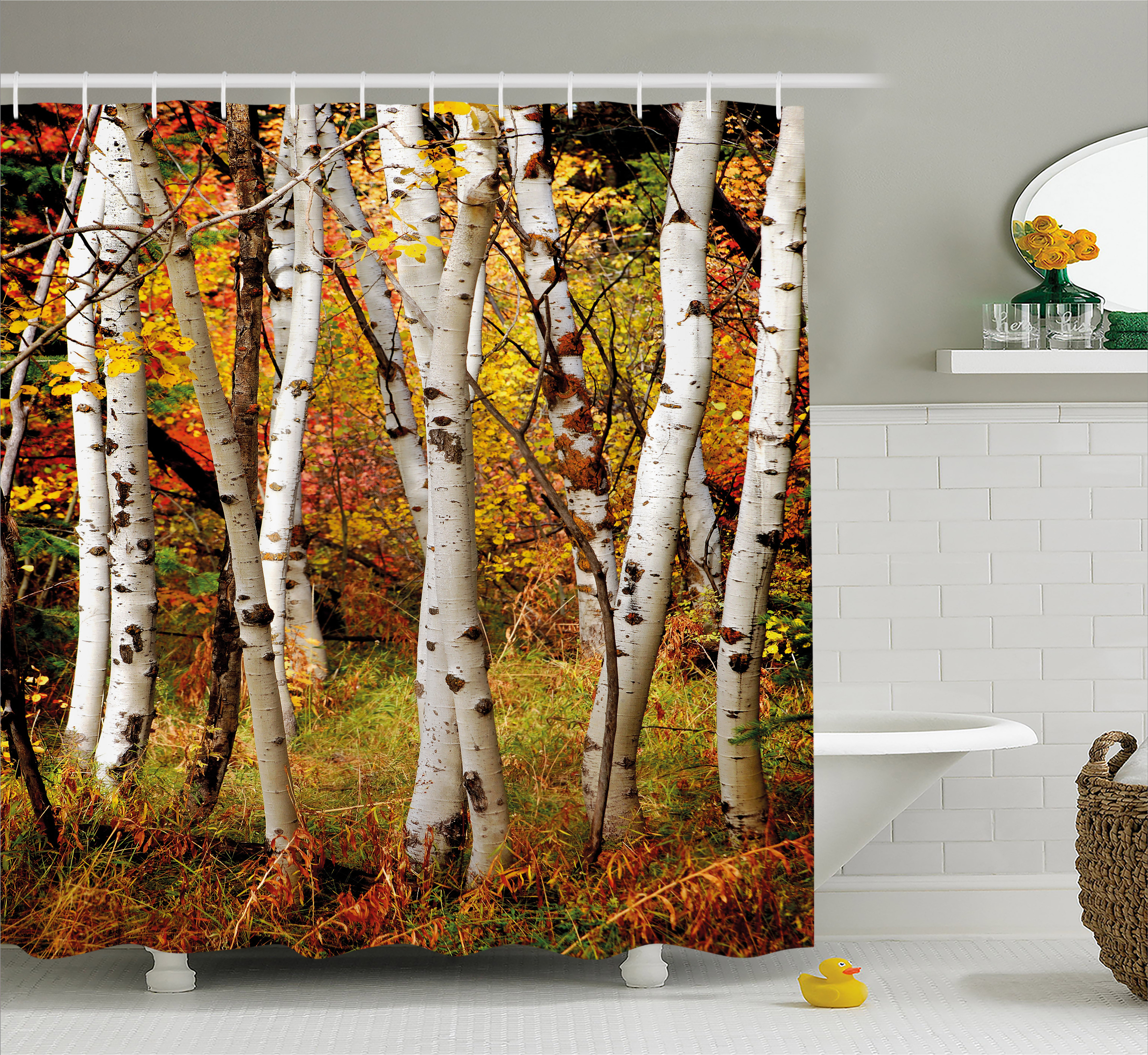 Fall Decor Shower Curtain, White Fall Birch Trees With Autumn Leaves Growth  Wilderness Ecology Calm