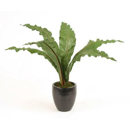 Distinctive Designs Green Antherium Leaves Floor Plant In