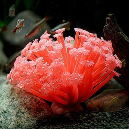 Joyfeel Clearance Artificial Sea Anemone Imitated Coral Ornaments 15*10cm For Fish Tank Aquarium