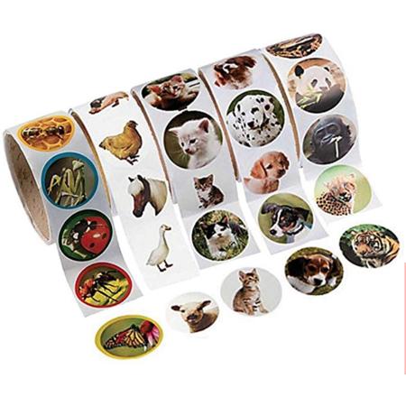 Animal Stickers: Cats, Dogs, Zoo Animals, Farm Animals and (Farm Animals Stickers)
