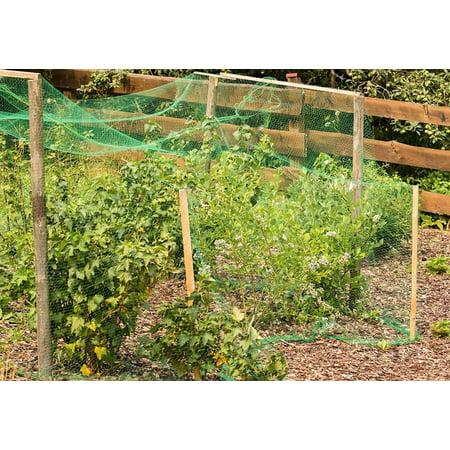 Garosa La maille d'escrime de fruits de plante de jardin de filet de filet vert d'anti protègent des fruits des oiseaux de rongeurs - image 3 de 6
