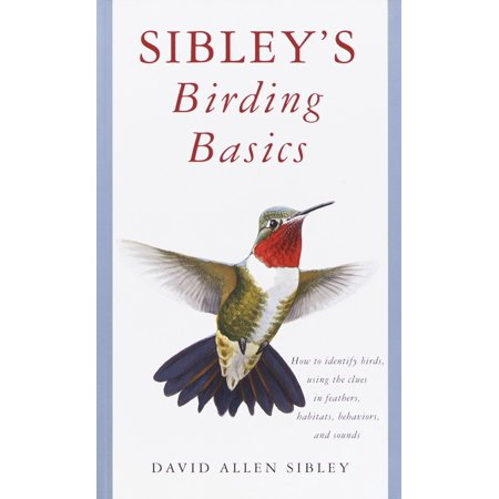 Sibley's Birding Basics : How to Identify Birds, Using the Clues in Feathers, Habitats, Behaviors, and (Bird That Sounds Like Nelson From The Simpsons)