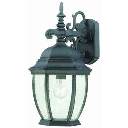 Thomas Lighting SL92297 Covington Outdoor Wall Lantern, -