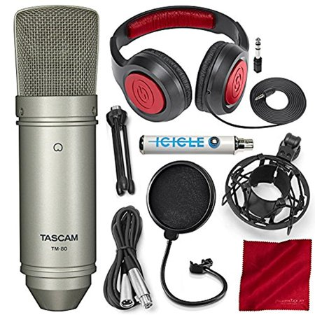 Tascam TM-80 Large Diaphragm Condenser Microphone with Blue Icicle USB Microphon
