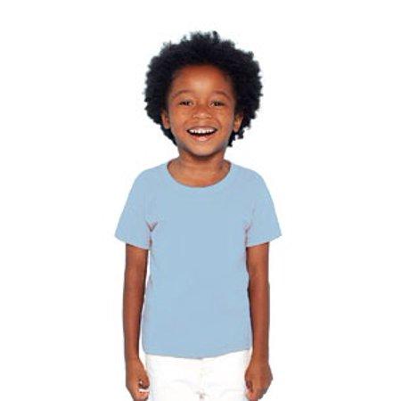 Boy Light T-shirt (Gildan Little Boys' Taped Neck Heavy Preshrunk T-Shirt, 6T, Light Blue )