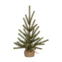 Sullivans Pine Tree with Burlap Base