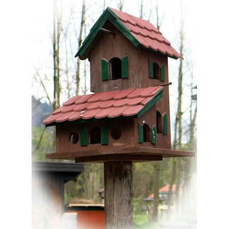 Canvas Print Aviary Nesting Place Bird Bird Feeder Stretched Canvas 10 x -
