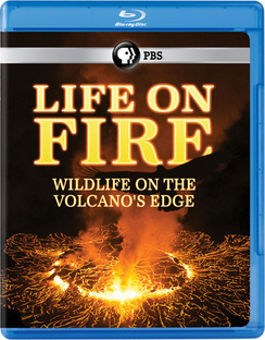 Life on Fire: Wildlife on the Volcano's Edge (Blu-ray) by PBS