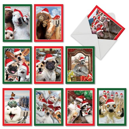 M2373XTG HOLIDAY ANIMAL SELFIE' 10 Assorted Christmas Thank You Notecards Featuring Sweet and Funny Animals Capturing Christmas Selfies of Themselves and Their Animal Friends, with Envelopes by The