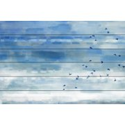 Parvez Taj Blue Sky Birds Art Print on White Pine Wood