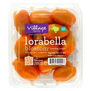 Orange Mini San Marzano Tomatoes 10 oz