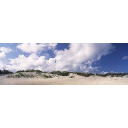 Sand Dunes Cape Hatteras National Seashore Outer Banks North Carolina Usa Poster Print