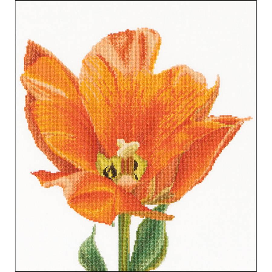 "Orange Triumph Tulip On Aida Counted Cross Stitch Kit, 13.25"" x 14"", 16 Count"