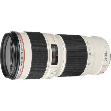 Canon EF 70-200mm f/4L USM Telephoto Zoom Lens for Canon SLR Cameras International Version (No warranty)