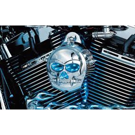 Kuryakyn Zombie Infinity Horn Cover Chrome Fits 92 14 Harley Davidson Fatboy Flstfi