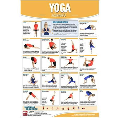 Productive Fitness Posters Yoga Asana Exercises  Laminate Or Non Laminated